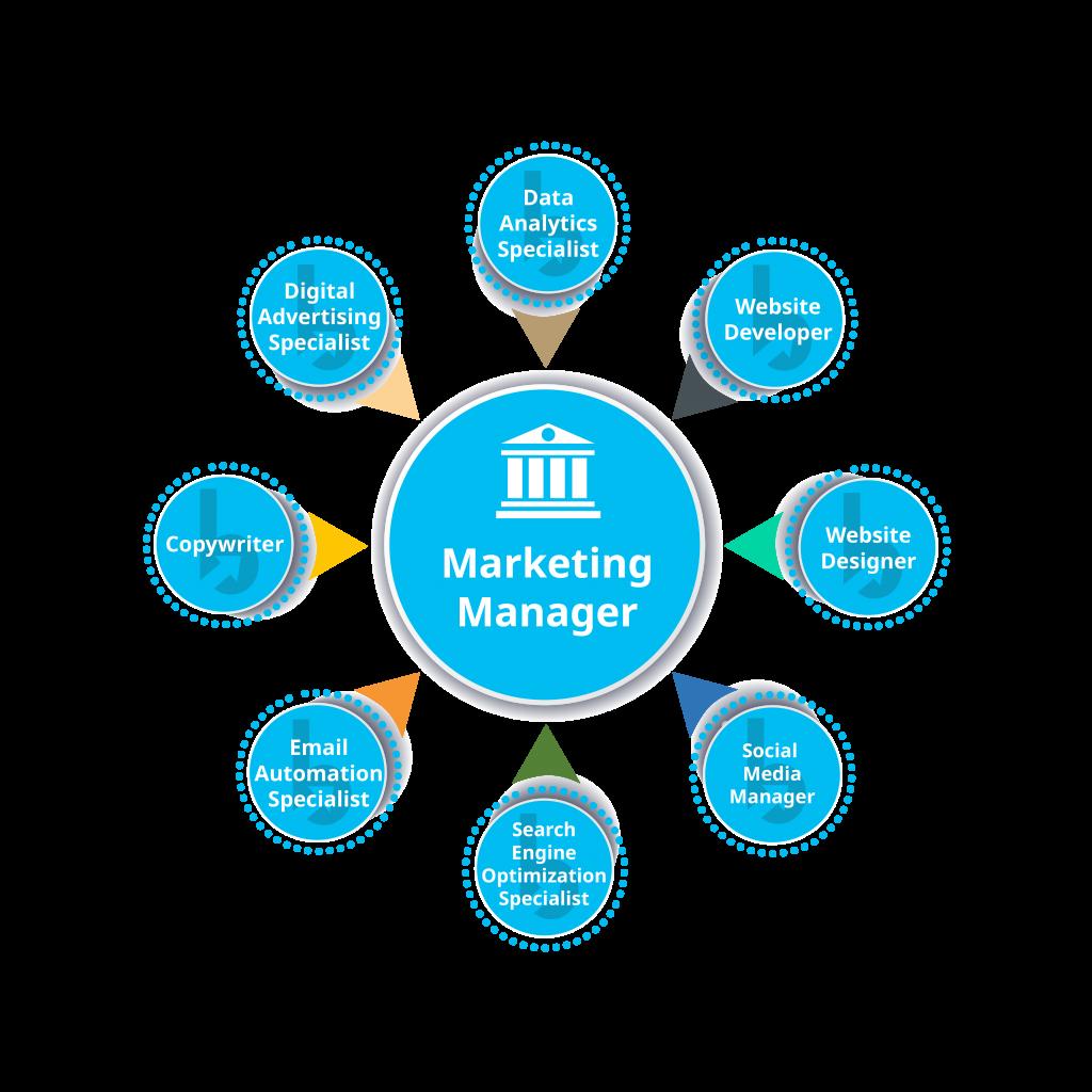 Bank Marketing Org Chart